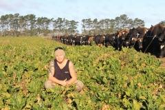 rakaia-island-dairy-farm-farming-dairy-1-unit-1-gallery-1