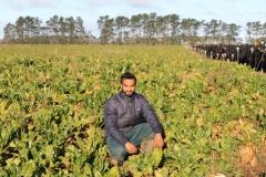 rakaia-island-dairy-farm-farming-dairy-1-unit-1-gallery-7