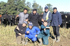 rakaia-island-dairy-farm-farming-dairy-5-unit-5-gallery-10