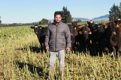 rakaia-island-dairy-farm-farming-dairy-5-unit-5-gallery-4