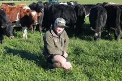 rakaia-island-dairy-farm-farming-drystock-gallery-3